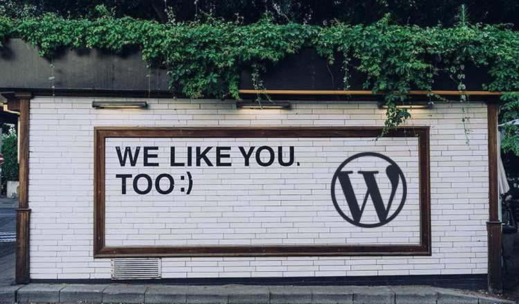 Thoughts on WordPress Achieving 40% Market Share