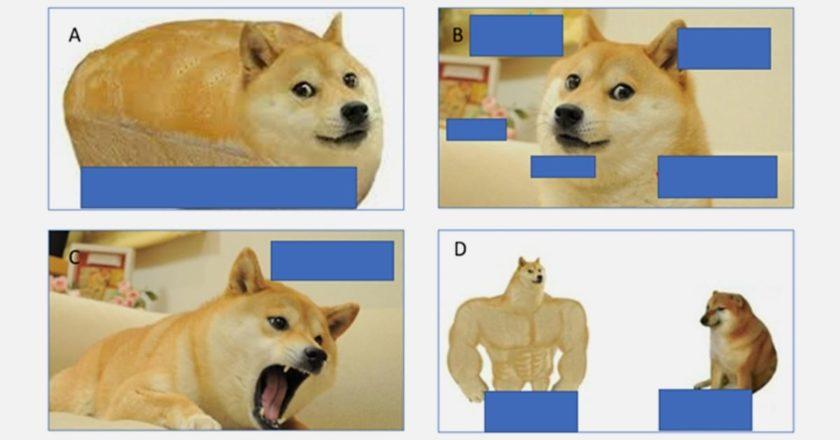 Dogecoin Marketing Lessons | MarketingProfs