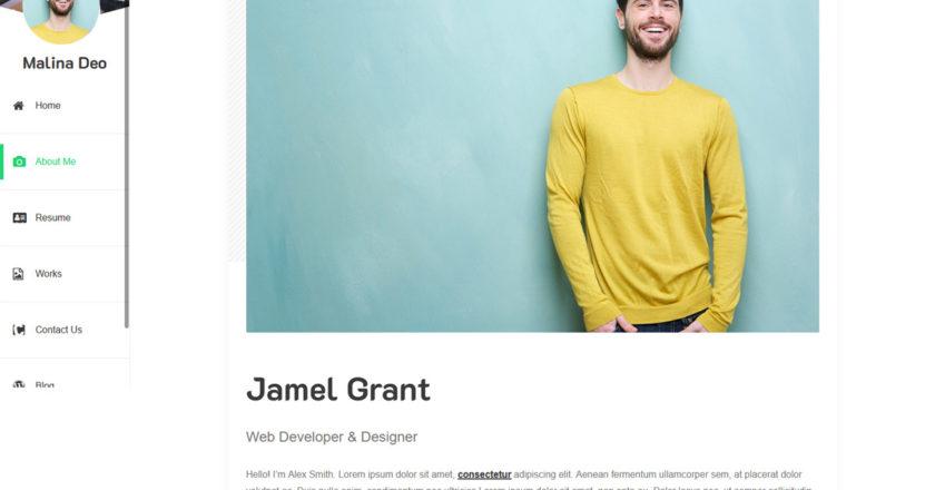 Free Resume WordPress Themes 2021