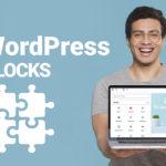 WordPress Blocks and Top Advanced Block Builders 101
